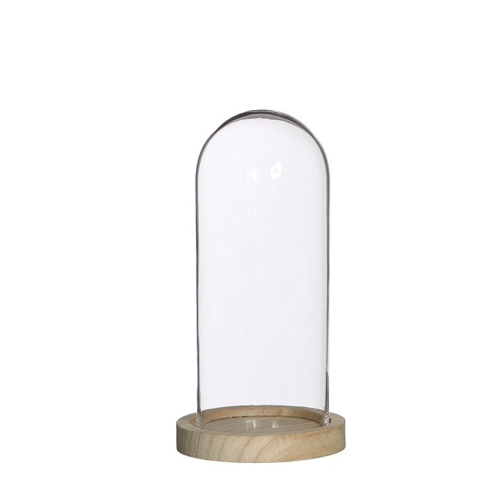<h4>Glass Cloche+wood d10*20cm</h4>