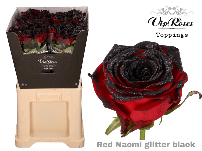 <h4>R GR RED NAOMI  GLITTER BLACK</h4>