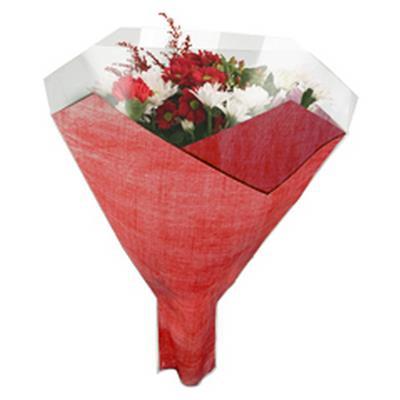 <h4>Housses 52x44x12cm OPP40 Duo Fibre rouge</h4>