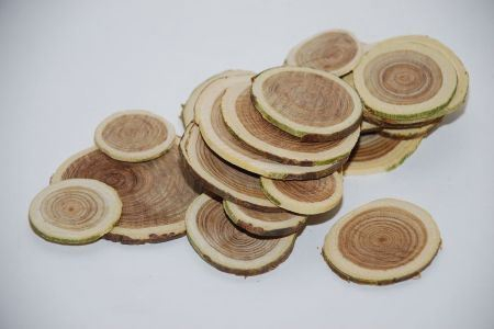 <h4>Basic Woodslices 250gr D2-4</h4>