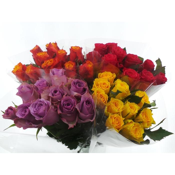 <h4>Bouquet Mono Rozen x10 mix 50cm</h4>