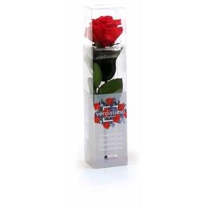 Roos op steel mini 27,5cm Red
