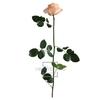 Rose on stem xl bulk 55cm peach