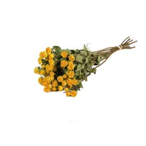 Roses spray yellow nat. Craft