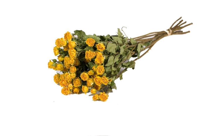 <h4>Roses spray yellow nat. Craft</h4>