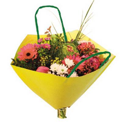 <h4>Bro-lux sac à bouquet 35x35cm papier jaune + ance</h4>