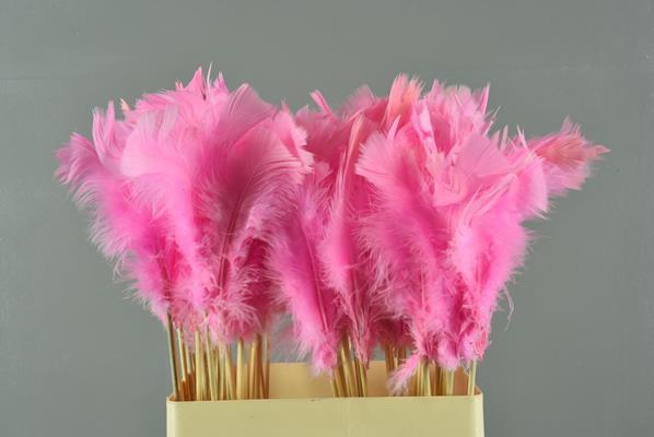 <h4>Stick Feather Lt. Pink 14cm</h4>