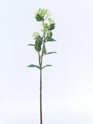 <h4>Af Viburnum Green</h4>