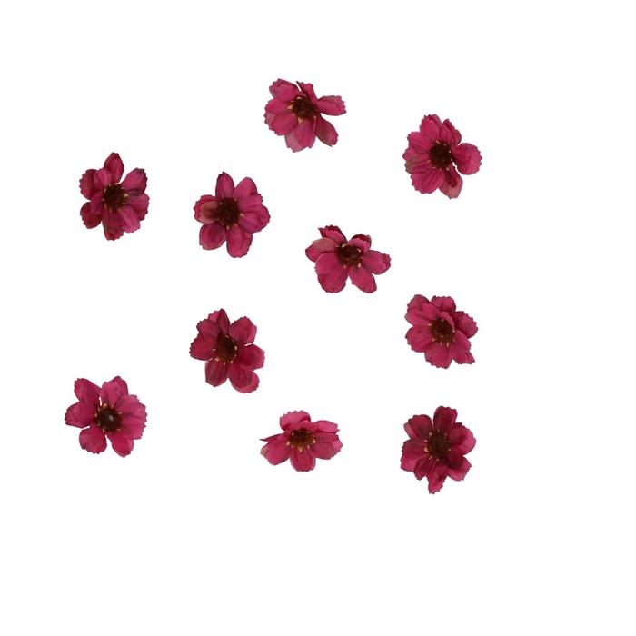 <h4>Decoration Flower d4cm x48</h4>