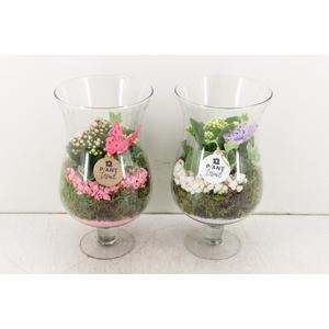 arr. PL - Glas op voet L - roze/wit
