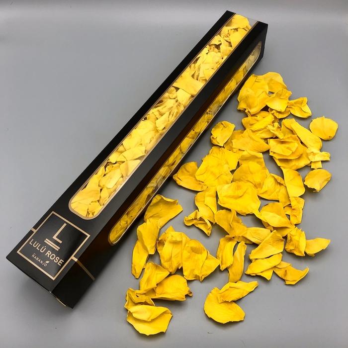 <h4>R PR Petals Lulu Yellow 200gr</h4>