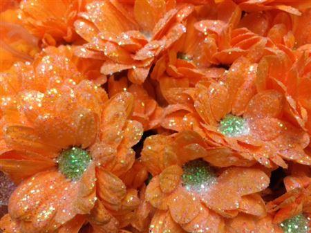 <h4>Chr T Bacardi Apricot + Glit</h4>