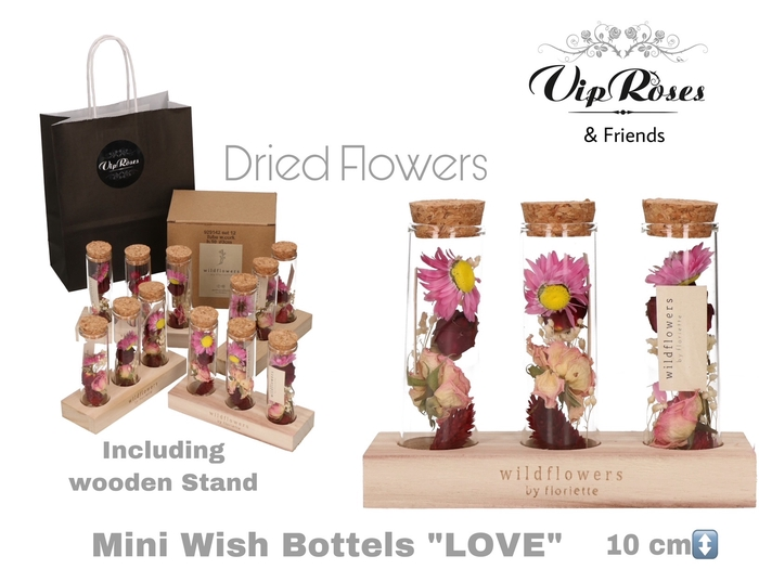 <h4>Vip Dried Mini Wish Bottle Love (set Price)</h4>