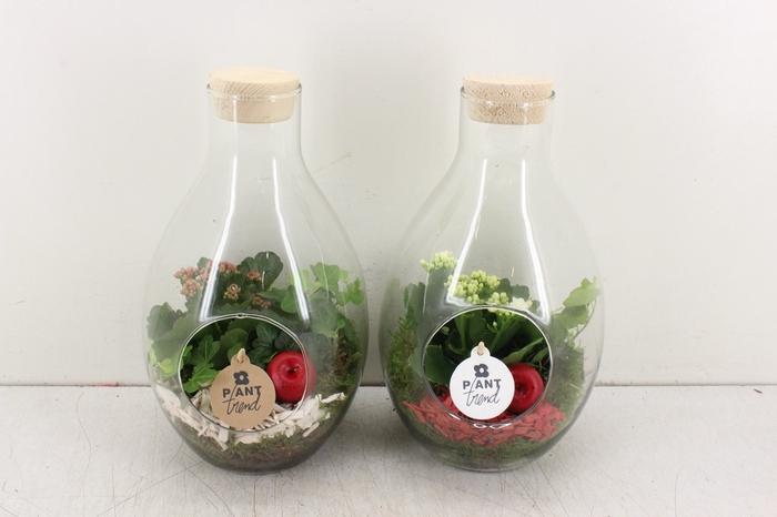 <h4>arr. PL - Glas druppel vaas  rood/wit</h4>
