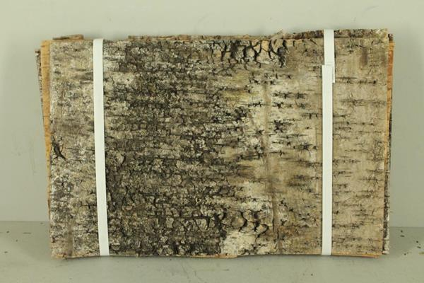 <h4>Birch Bark Pack 42x27cm(7p)nat</h4>