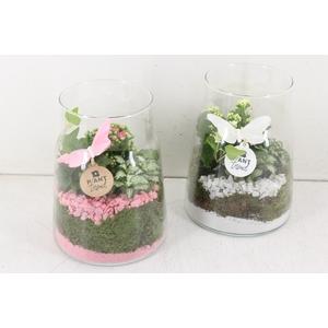 arr. PL - Glas vaas - roze/wit