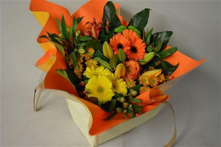 <h4>Aqua Luxe Oranje</h4>