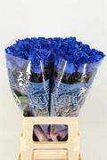 <h4>Rose painted Vendela blue</h4>