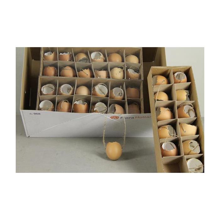 <h4>Egg Chicken Brown Broken Box12</h4>