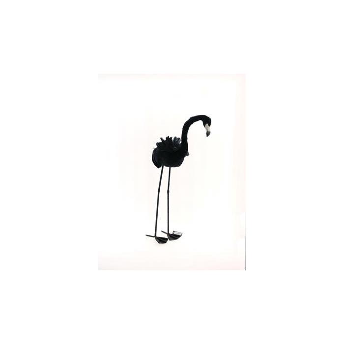 <h4>Fig. Black Feather Flamingo 87</h4>