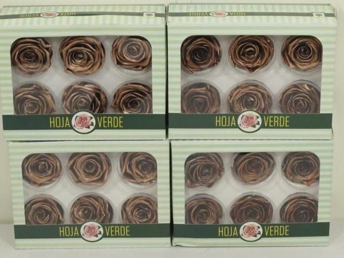 <h4>Preserved Roses Copper</h4>
