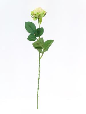 <h4>Af Diamond Rose Light Green 40</h4>