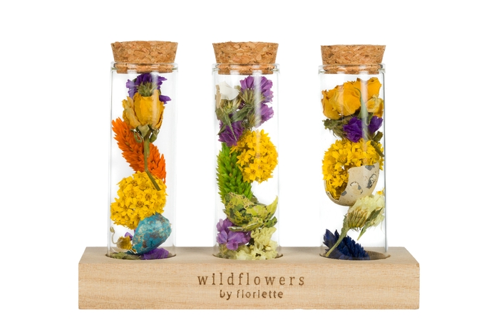 <h4>MINI WISH BOTTLE EASTER (EXCL. WOODEN STAND)</h4>