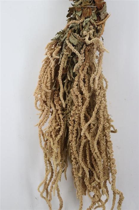<h4>Dried Amaranthus Green Natural 200g</h4>