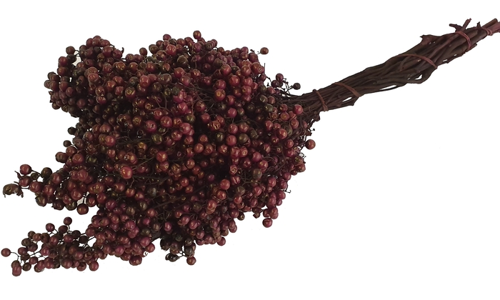 <h4>Pepperberries per bunch in poly bordeaux</h4>