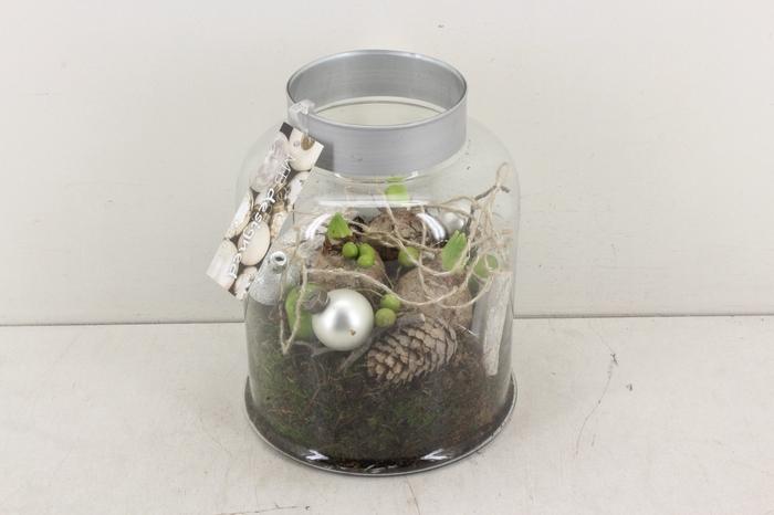 <h4>arr.. Hyacint MB - Glas venice silver light</h4>