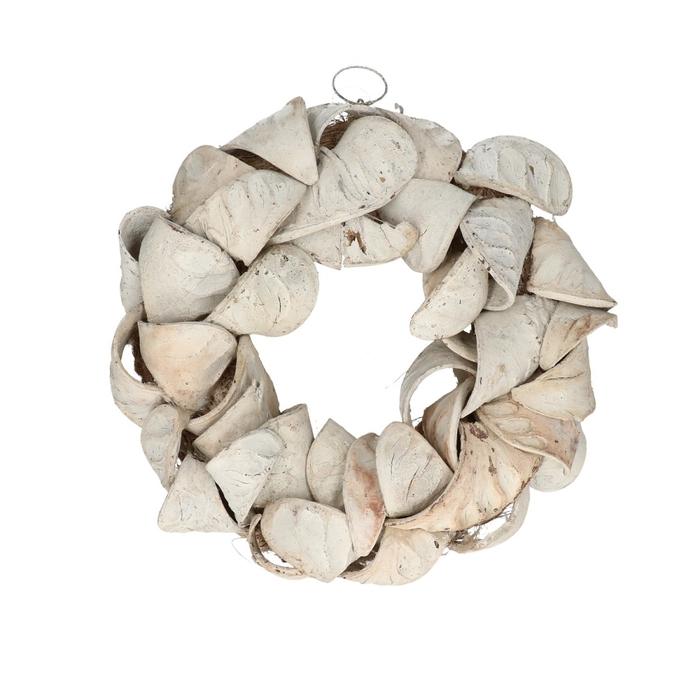 <h4>Wreath d30cm Elephant ear</h4>