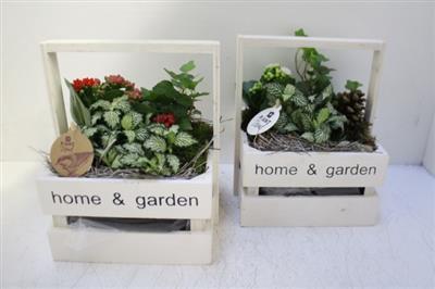 <h4>0762 Kist Home en Garden</h4>