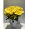 Chr Carolle Yellow