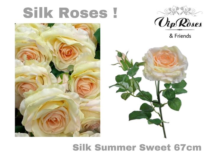 <h4>SILK SUMMER SWEET</h4>