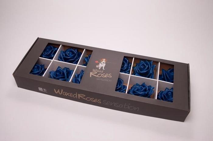 <h4>Prs gr Wax 150 Blue In Ds</h4>