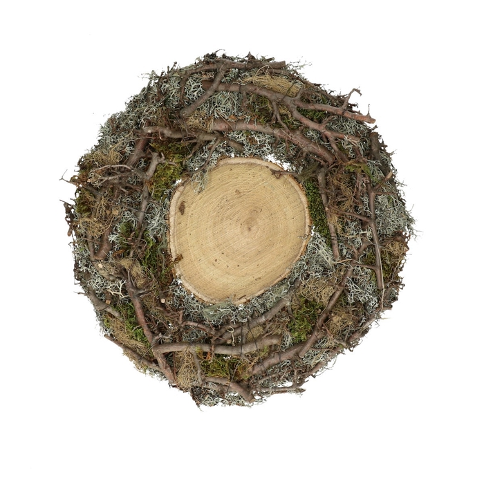 <h4>Dried articles Basic bonsai+moss plate d40cm</h4>