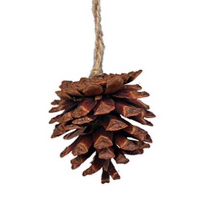 <h4>Hanger dennenappel 6cm+12cm jute touw</h4>