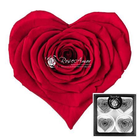<h4>Pr 5.2 Heart Red-02 Bella</h4>