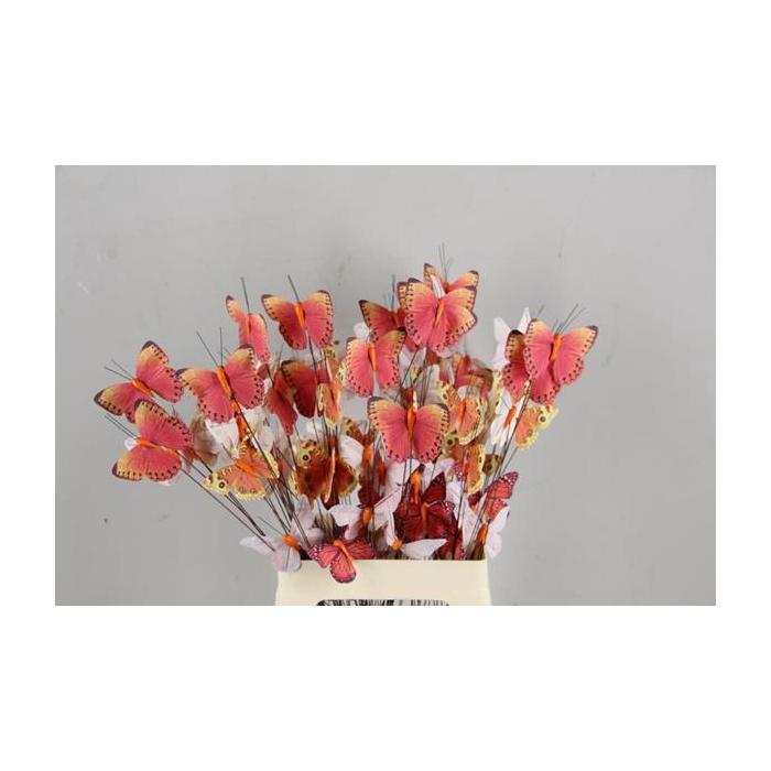 <h4>Stick Butterfly Bouquet Orange</h4>