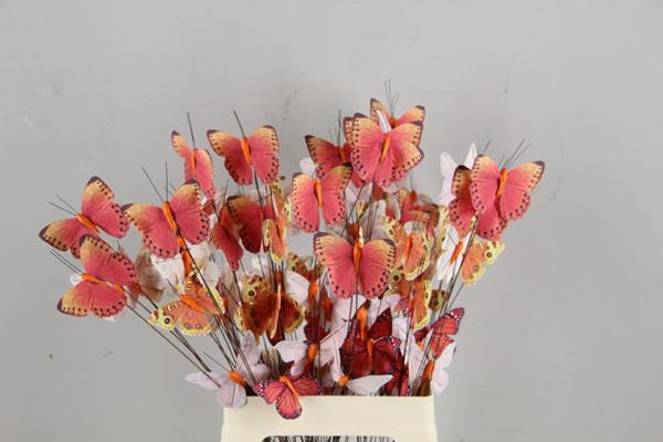 <h4>Stick Butterfly Bouquet Orange</h4>