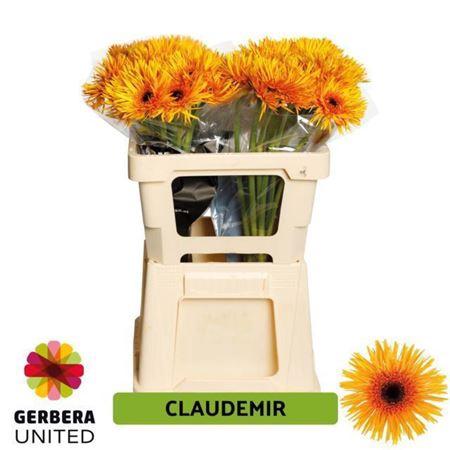 GE GS CLAUDEMIR