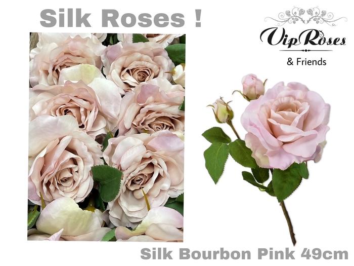 <h4>SILK BOURBON PINK</h4>