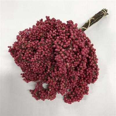 <h4>Droog Pepperberries 175 Gram Pink Naturel</h4>