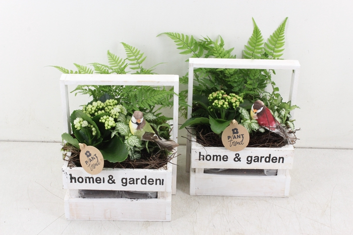 arr. PL - Kist home en garden - roze/wit
