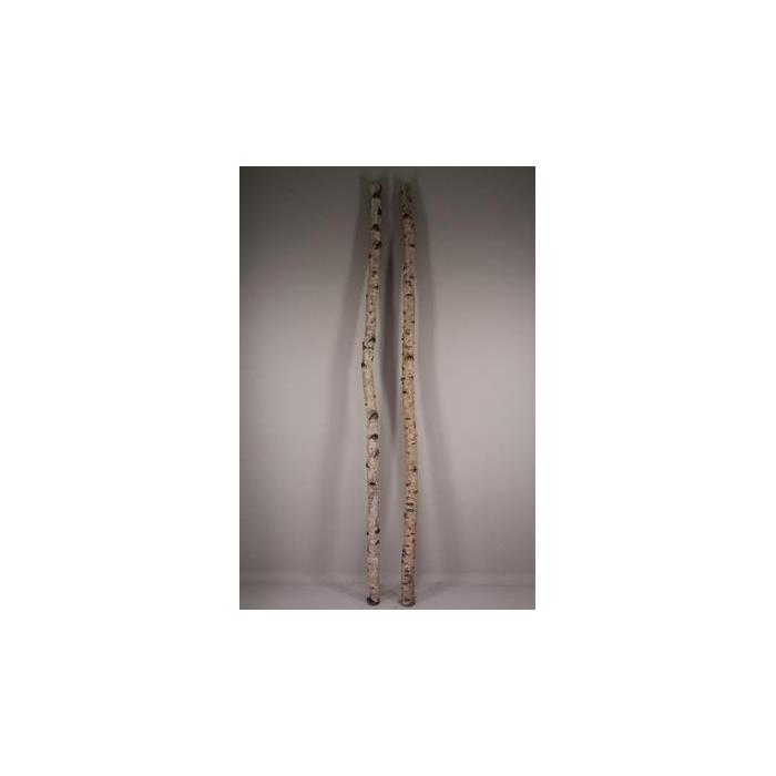 <h4>Birch Trunk 6-8cm 240cm</h4>