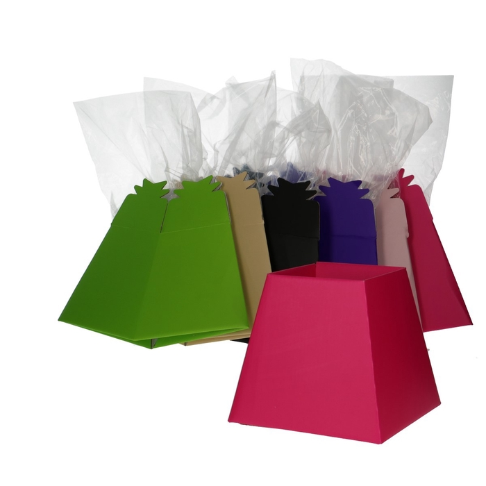 <h4>Bags Living vase 23*17.5*17cm Ass.</h4>