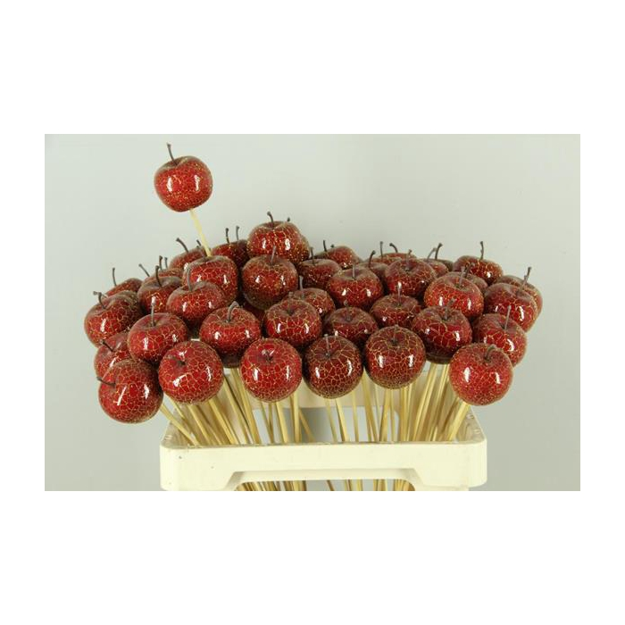 <h4>Stick Apple 6cm Crack Red</h4>