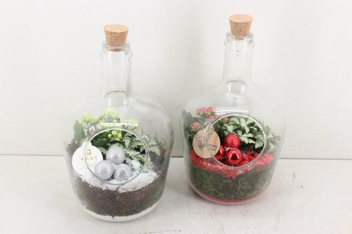 <h4>arr. PL - Glas fles kurk - rood/wit</h4>