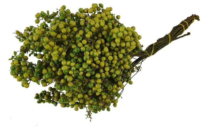 <h4>Pepperberries per bunch in poly light green</h4>