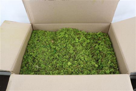 <h4>Reindeer Moss 15kg May Green B</h4>